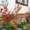 Velikonoční tvoření- akce pozměněna – Fotosoutěž